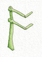 Os Rune